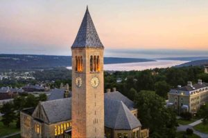 Intellectual Property Officer, Center for Technology Licensing at Cornell University