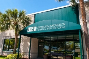 University of South Florida Licensing Managers – Physical and Life Science