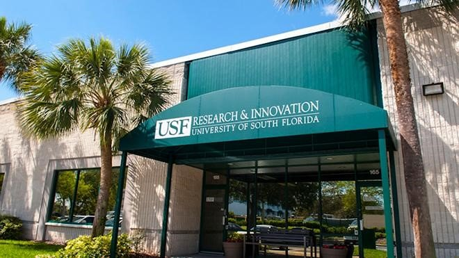University Of South Florida Entryway